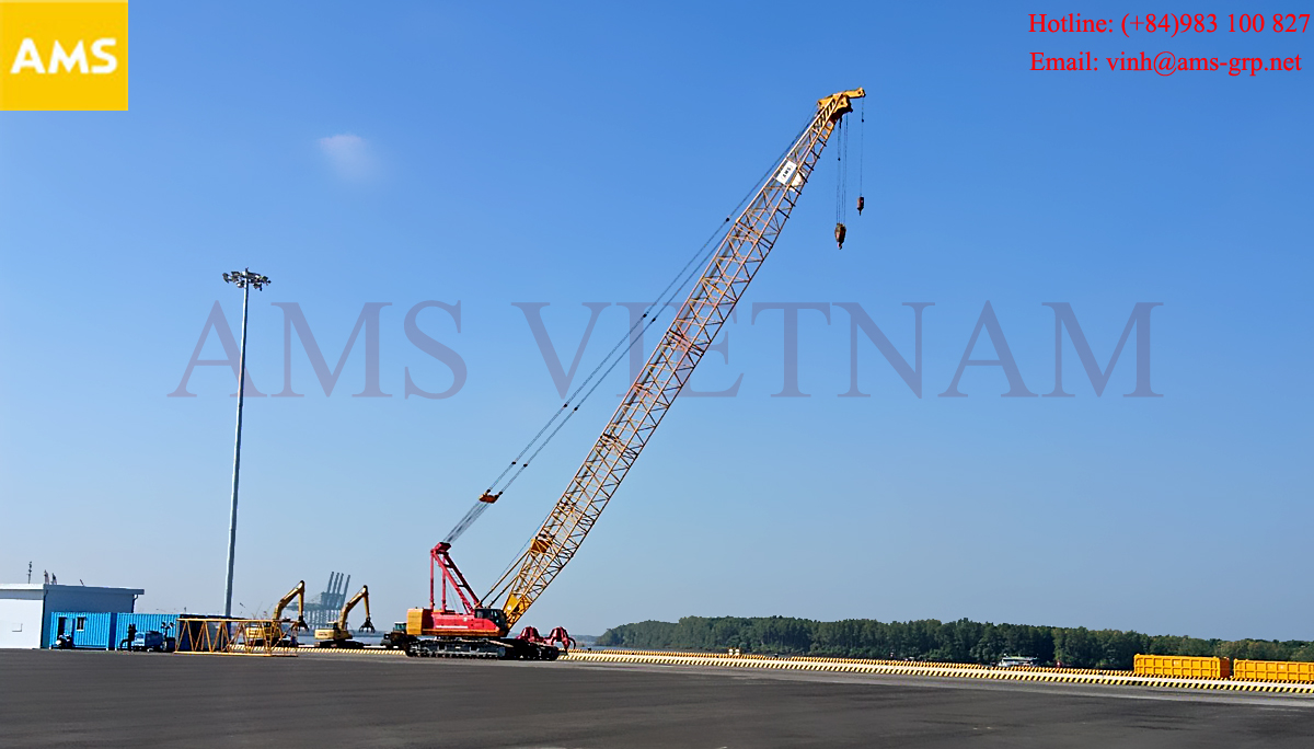 crane for rent in vung tau